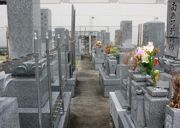 法雲寺(浄土宗)